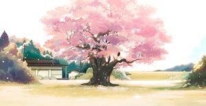 桜・花見の壁紙 3424×1766px 4506KB
