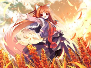 Rating: Safe Score: 52 Tags: animal_ears blush clouds dress fang horo long_hair ookami_to_koushinryou orange_hair red_eyes shino_(eefy) sky tail wolfgirl User: 秀悟