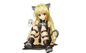 Rating: Safe Score: 96 Tags: animal_ears blonde_hair boots catgirl golden_darkness panties tail to_love_ru underwear white User: modapi