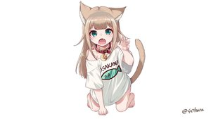 Rating: Safe Score: 53 Tags: 40hara animal_ears brown_hair catgirl choker fang green_eyes kinako_(40hara) loli original watermark white User: gnarf1975