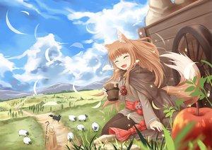 狼と香辛料の壁紙 1441×1024px 991KB