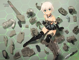Rating: Safe Score: 76 Tags: frame_arms_girl gourai yang-do User: RyuZU