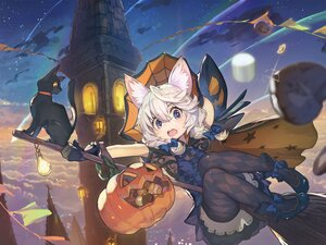 Rating: Safe Score: 39 Tags: animal animal_ears braids building candy cat dress gray_hair halloween hat hide_(hideout) original pantyhose purple_eyes see_through witch User: SciFi