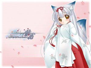 Rating: Questionable Score: 24 Tags: animal_ears foxgirl japanese_clothes miko nakajima_konta setuka snow_fox User: 秀悟