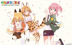 Rating: Safe Score: 31 Tags: animal_ears anthropomorphism blonde_hair bow brown_eyes catgirl elbow_gloves fly_333 food foxgirl gloves kemono_friends long_hair nana_(kemono_friends) pink_eyes pink_hair red_fox_(kemono_friends) serval short_hair shorts skirt stars tail yellow_eyes User: RyuZU
