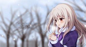 Fate/kaleid liner プリズマ☆イリヤの壁紙 2939×1605px 3663KB