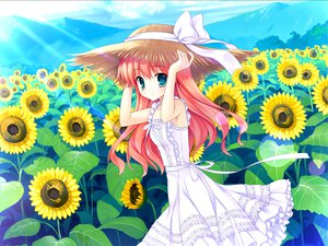 Rating: Safe Score: 51 Tags: blue_eyes dress flowers game_cg green_eyes hat himezono_risa landscape long_hair mitha nanawind pink_hair scenic sunflower yuyukana User: bloorex