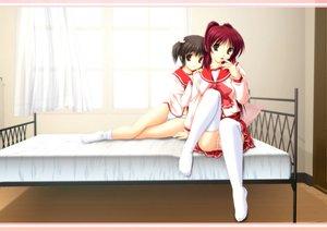 Rating: Questionable Score: 42 Tags: 2girls bed kousaka_tamaki panties school_uniform striped_panties thighhighs to_heart to_heart_2 underwear yuzuhara_konomi zettai_ryouiki User: rargy