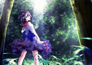 Rating: Safe Score: 74 Tags: black_hair dress forest horns juji kijin_seija landscape red_eyes scenic short_hair touhou tree User: Shupa