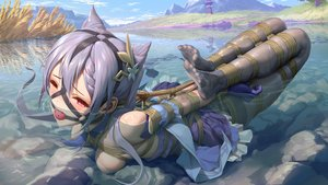 Rating: Questionable Score: 159 Tags: bondage clouds genshin_impact keqing_(genshin_impact) nipples pantyhose purple_hair rope see_through sky tokinohimitsu twintails water wink User: Fepple