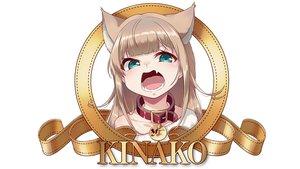 Rating: Safe Score: 78 Tags: 40hara animal_ears brown_hair catgirl choker fang green_eyes kinako_(40hara) loli original parody white User: gnarf1975