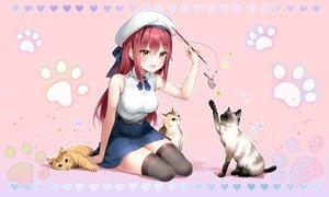 Rating: Safe Score: 56 Tags: animal blush brown_eyes cat hat heart long_hair marmoset pink red_hair skirt thighhighs waifu2x zettai_ryouiki User: BattlequeenYume