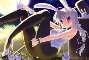Rating: Safe Score: 178 Tags: animal_ears braids bunny_ears bunnygirl dengeki_moeoh moon nanao_naru original pantyhose scan User: Wiresetc