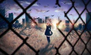 Rating: Safe Score: 235 Tags: 40hara animal bird building city clouds dress grass headband horns long_hair original red_eyes sheepgirl sky thighhighs white_hair zettai_ryouiki User: Flandre93