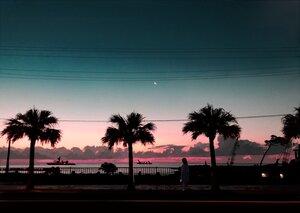 Rating: Safe Score: 66 Tags: clouds moon night original photo scenic shinoda_mugi sky sunset tree User: mattiasc02