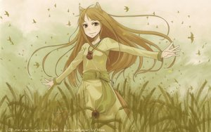 Rating: Safe Score: 62 Tags: animal animal_ears ayakura_juu bird brown_hair clouds dress horo long_hair red_eyes sky spice_and_wolf tail wolfgirl User: Kuroh
