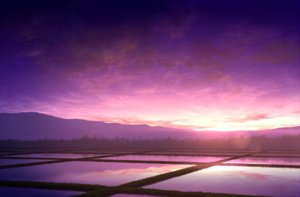 Rating: Safe Score: 117 Tags: landscape mks nobody original purple scenic sunset User: FormX