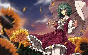Rating: Safe Score: 13 Tags: dress flowers kazami_yuuka petals red_eyes sunflower touhou umbrella zqhzx User: gnarf1975