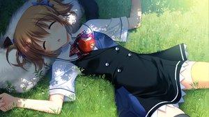 Rating: Safe Score: 134 Tags: animal apple brown_hair dog food fruit fumio game_cg grass grisaia_no_kajitsu irisu_makina sleeping User: Wiresetc