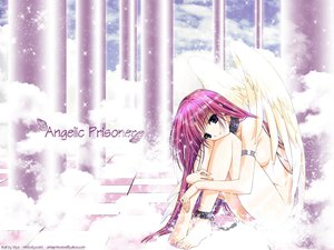 Rating: Safe Score: 12 Tags: angel blue_eyes nude pink_hair suzuhira_hiro wings User: Oyashiro-sama