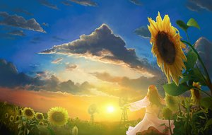 Rating: Safe Score: 80 Tags: brown_hair clouds dress flowers landscape long_hair scenic sky sunflower sunset User: Maboroshi