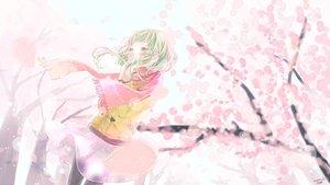 Rating: Safe Score: 55 Tags: blush cherry_blossoms flowers green_eyes green_hair gumi petals ruru_(tsuitta) scarf short_hair skirt vocaloid User: FormX