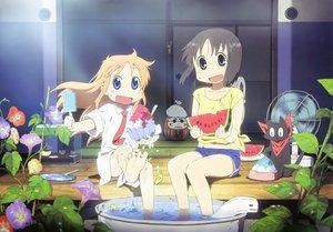 Rating: Safe Score: 58 Tags: akitake_seiichi animal cat food fruit hakase_(nichijou) ice_cream nichijou sakamoto_(nichijou) scan shinonome_nano water watermelon User: Wiresetc
