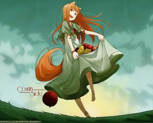 Rating: Safe Score: 58 Tags: animal_ears apple barefoot clouds dress food fruit grass horo long_hair ookami_to_koushinryou orange_hair red_eyes signed sky tail watermark User: w7382001