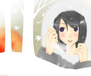 Rating: Safe Score: 10 Tags: black_hair blue_eyes leaves snow tree User: Oyashiro-sama
