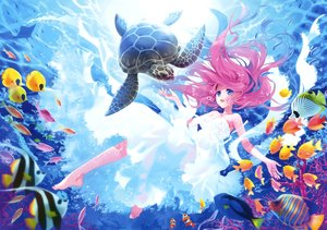 Rating: Safe Score: 147 Tags: animal barefoot blue_eyes carnelian dress fish long_hair pink_hair scan turtle underwater water User: Flandre93