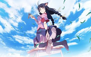 Rating: Safe Score: 51 Tags: animal_ears bakemonogatari catgirl glasses hanekawa_tsubasa monogatari_(series) sky User: rargy
