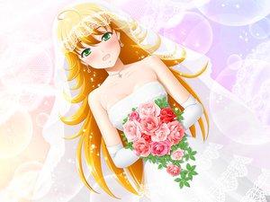 Rating: Safe Score: 34 Tags: hoshii_miki idolmaster wedding wedding_attire User: HawthorneKitty