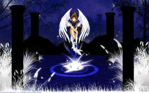 Rating: Safe Score: 23 Tags: aa_megami-sama belldandy wings User: mikucchi
