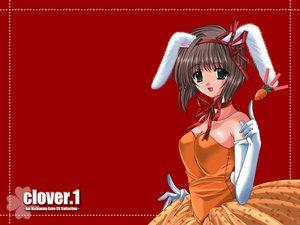 Rating: Safe Score: 7 Tags: animal_ears bunny_ears bunnygirl nishimata_aoi red User: Oyashiro-sama