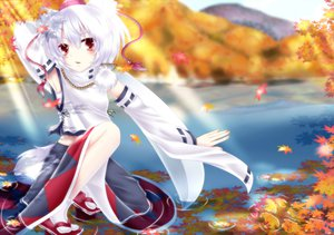 Rating: Questionable Score: 64 Tags: akuriru inubashiri_momiji touhou User: gnarf1975