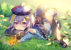 Rating: Safe Score: 39 Tags: braids butterfly chinese_clothes flowers genshin_impact grass hat ofuda purple_eyes purple_hair qiqi_(genshin_impact) ranchan12 thighhighs User: Dreista
