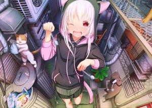 Rating: Safe Score: 40 Tags: abo_(kawatasyunnnosukesabu) animal animal_ears blush cat catgirl fish hoodie long_hair original pink_hair red_eyes tail wink User: RyuZU