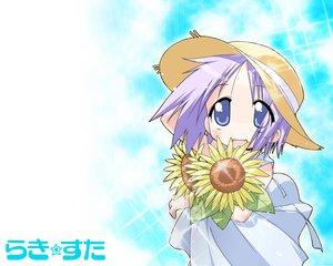 Rating: Safe Score: 8 Tags: flowers hiiragi_tsukasa lucky_star sunflower User: Oyashiro-sama