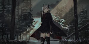 Rating: Safe Score: 105 Tags: blood chihuri405 dark dress elbow_gloves forest garter_belt gloves grass gray_hair horns long_hair original pixiv_fantasia red_eyes stockings thighhighs tie torn_clothes tree zettai_ryouiki User: ssagwp