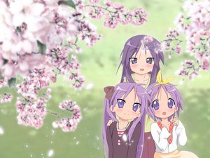 Rating: Safe Score: 41 Tags: cherry_blossoms flowers hiiragi_kagami hiiragi_miki hiiragi_tsukasa lucky_star User: rargy