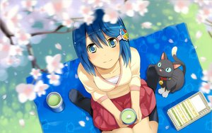Rating: Safe Score: 82 Tags: animal blue_eyes blue_hair cat cherry_blossoms drink flowers food kneehighs madobe_nanami microsoft os-tan short_hair skirt windows User: zeronothing