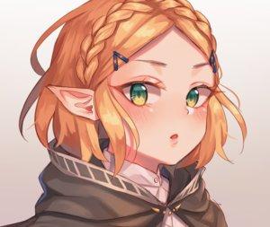 Rating: Safe Score: 69 Tags: blonde_hair blush braids close cropped gradient green_eyes hoodie pointed_ears princess_zelda short_hair sketch the_legend_of_zelda tsukiaki_teriyaki User: otaku_emmy