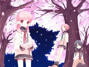 Rating: Safe Score: 9 Tags: cherry_blossoms flowers petals sakura_musubi tagme User: Oyashiro-sama