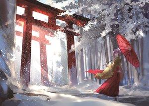 Rating: Safe Score: 67 Tags: forest hieda_no_akyuu japanese_clothes snow three_k_(spiritus_no_honoo) torii touhou tree umbrella winter User: FormX