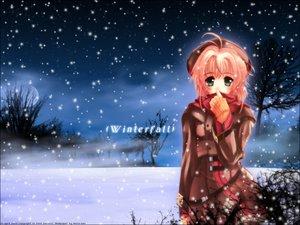 Rating: Safe Score: 26 Tags: card_captor_sakura kinomoto_sakura snow winter User: Oyashiro-sama