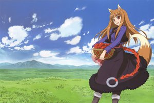 Rating: Safe Score: 50 Tags: animal_ears apple clouds dress food fruit grass horo landscape long_hair ookami_to_koushinryou orange_hair red_eyes scenic sky tail wolfgirl User: 秀悟