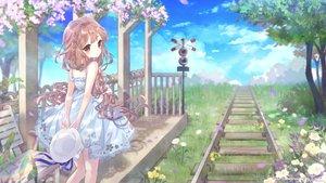 桜・花見の壁紙 3300×1856px 8172KB
