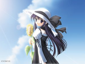 Rating: Safe Score: 3 Tags: flowers shirakawa_sayaka suika sunflower User: Oyashiro-sama