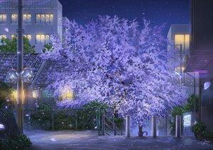 Rating: Safe Score: 66 Tags: animal building cat cherry_blossoms city mirror night niko_p nobody original petals scenic signed tree User: RyuZU