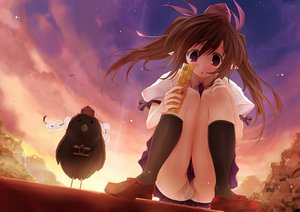 Rating: Questionable Score: 37 Tags: animal bird brown_hair clouds himekaidou_hatate kneehighs long_hair panties phone pink_eyes scarlet_(studioscr) shameimaru_aya skirt sky sunset touhou twintails underwear User: RyuZU
